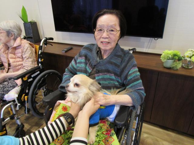 【AH練馬ガーデン】月に一度のアニマルセラピーでは、かわいい犬に癒されています!