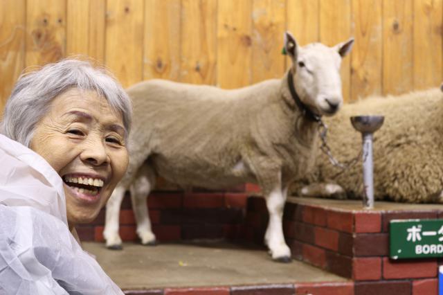 【AH横浜東寺尾】日帰りバスツアーの旅☆今回の行き先は「マザー牧場」です☆