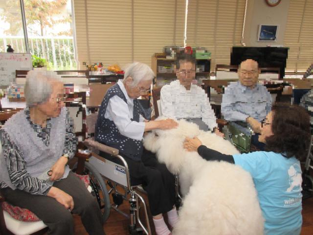 【AH横浜東寺尾】フワフワの毛並みに癒される♪アニマルセラピーが行われました!