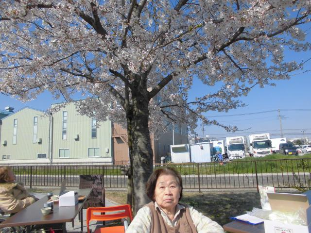 【AH三郷】平成最後のお花見は、ホーム前の桜並木で行いました♪