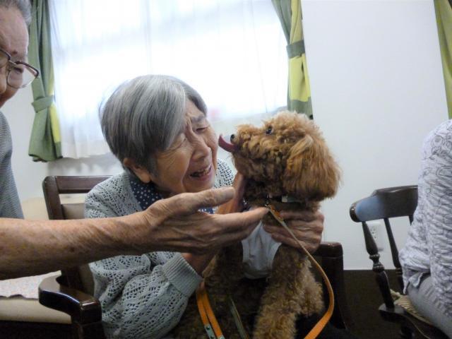 【AH川越】可愛いワンちゃんがホームにやってきた☆アニマルセラピーを行いました!