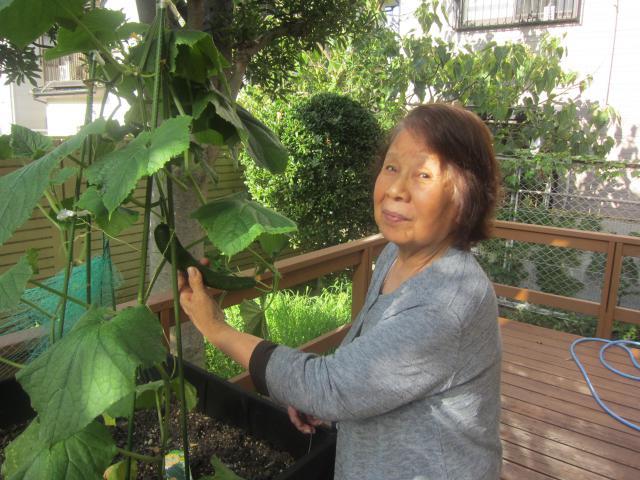 【AH中浦和】園芸サークル☆先月植えたナス・キュウリ・ハーブの収穫を行いました♬