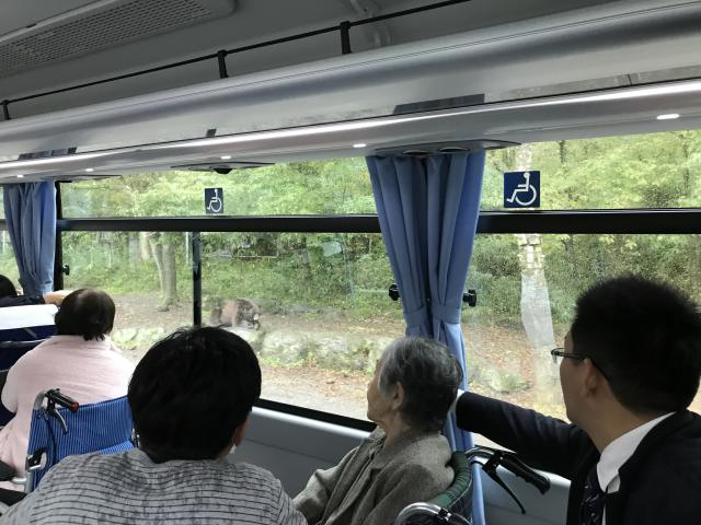 【AH横浜いずみ中央】富士サファリパークへ、バス旅行に行ってきました♬