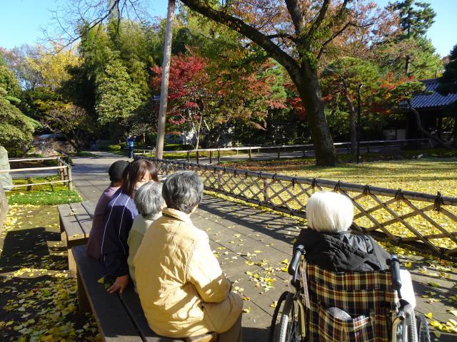 【AH杉並井草】この時期ならでは!の、紅葉の光景を、近場で楽しみました♬