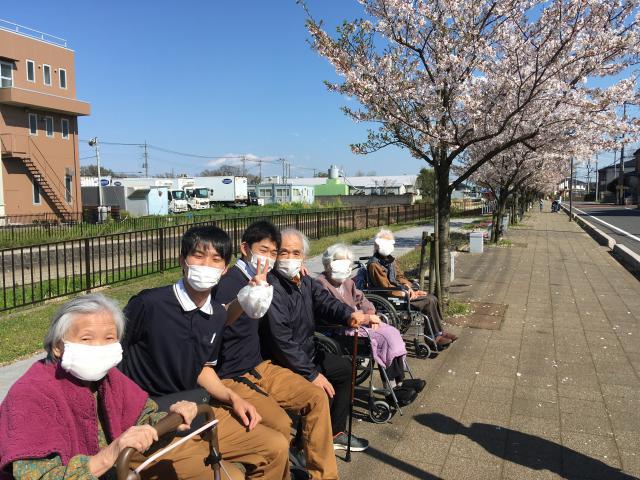 【AH三郷】ホームの前の桜並木で、束の間のお花見を楽しみました♬