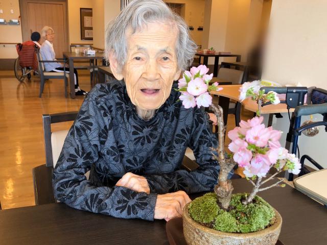 【AH千葉幕張】今年のお花見は、桜の盆栽を愛でる会となりました☆