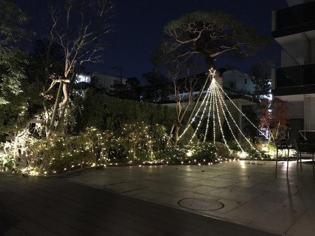 【AH練馬ガーデン】イルミネーションの点灯式を行い、ホーム中庭がキラキラと輝き始めました♬