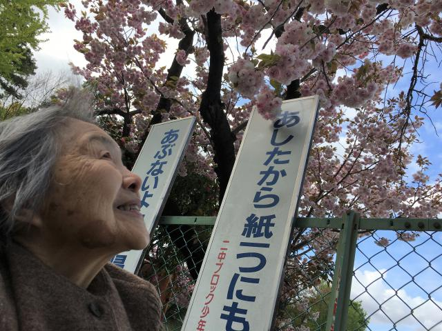 【AH市川アネックス】新卒スタッフと一緒に、桜を見に散歩に出かけました☆