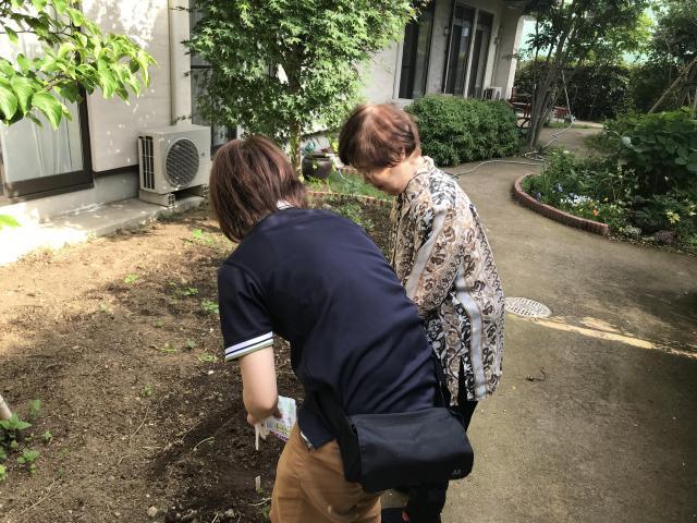 【AH横浜いずみ中央】ご入居者の好きな花でいっぱいの中庭となりました♬