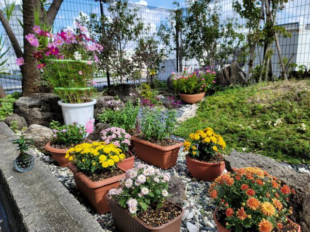 【AH文京白山】秋の気配を感じるお花やお食事を通して、四季の移ろいを感じていただければと思います。